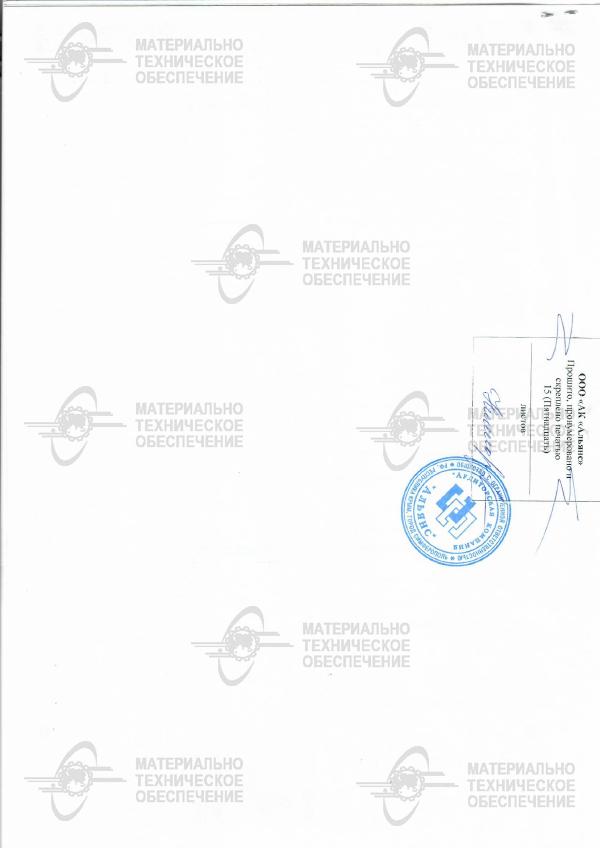 Аудиторское закл 2017-4